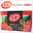 KitKatキットカット信州土産ミニ12枚入り(信州りんご!)チョコレート