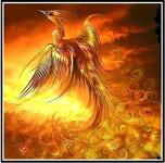 クロスステッチ刺繍キットDMC糸布地に図柄印刷火の鳥