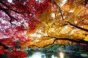 カラービーズストーン画  日本の紅葉名所 (新宿御苑)