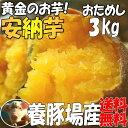 """【養豚場】が""""さつま芋""""を栽培&販売しているのは【当店だけ】しっとり蜜芋☆2箱で1kgサービス..."""