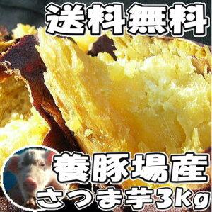 だんだん甘くなってきました☆養豚場産さつま芋!?送料無料☆2箱で1キロサービス!お試し品3キ...