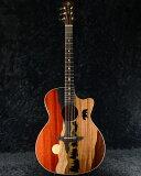 Luna Guitars Vista Bear Tropical Wood A/E 新品[ルナ][Acoustic Guitar,アコースティックギター,エレアコ]