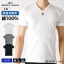 グンゼ ボディワイルド Vネック Tシャツ 綿100 BODY WILD GUNZE/【直営店限定】VネックTシャツ(紳士)/BWB315U