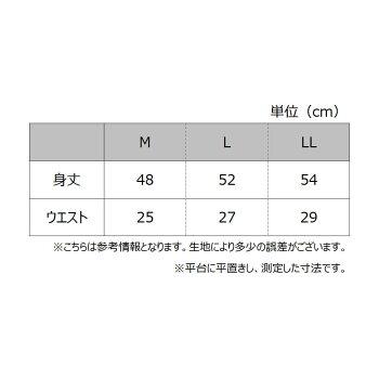 31MC6066