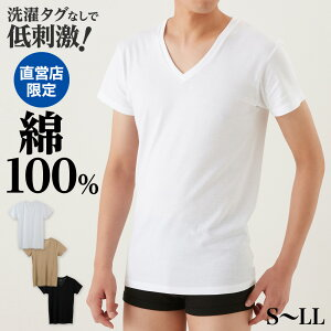 メンズ アンダー ウェア GUNZE(グンゼ) the GUNZE(ザ・グンゼ) メンズ Vネック Tシャツ 男性 肌着 下着 コットン THE GUNZE NEXTRA-COTTON 年間シャツ CK9015N インナー 半袖 無地 シンプル 綿100% コットン 男性用 日本製 GUNZE11