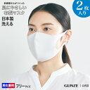 送料無料 布マスク GUNZE グンゼ マスク 日本製 洗える 肌にやさしい 布製 2枚入り 男女兼用 MAS002 フリー 肌着マスク やわらかい 国産 立体型 耳痛くなりにくい フィット 快適 安心 通勤 通学 大人用 予防 綿混 衛生 フィルター 二重構造 年間 GUNZE11 衛生特集