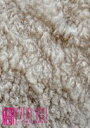 MERRY/MERRY VERY BEST 20121130 赤坂BLITZ 〜Special 2night【白い羊】〜 [DVD]