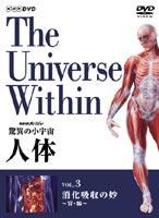 【25%OFF】[DVD] NHKスペシャル 驚異の小宇宙 人体 消化吸収の妙〈胃・腸〉
