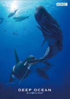 """[DVD] BBC海洋ドキュメンタリー """"ブルー・オデッセイ""""シリーズ ディープ・オーシャン"""