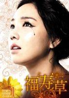 《送料無料》福寿草 DVD-BOX5(DVD)