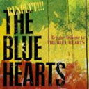 (オムニバス) RESPECT!!! THE BLUE HEARTS -A Reggae Tribute to THE BLUE HEARTS- [CD]