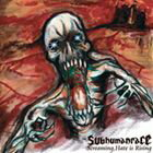 subhumanrace/Screaming,Hate is Rising(CD)