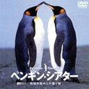ペンギン・シアター/南極大陸からの贈り物(DVD) ◆20%OFF!