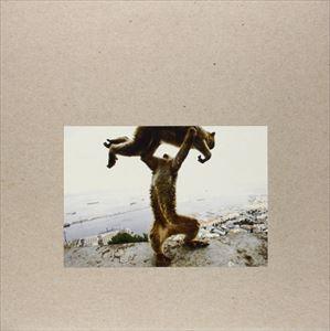 輸入盤 SHELLAC / DUDE INCREDIBLE (LTD) [LP+CD]