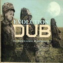 輸入盤 PRINCE JAMMY / EVOLUTION OF DUB VOL.6 [4CD]