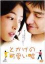 とかげの可愛い嘘 特別版(DVD) ◆20%OFF!