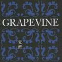 GRAPEVINE/覚醒 10th Anniversary Special Package(期間限定盤)(CD)