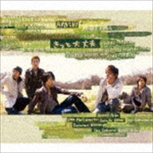 嵐/きっと大丈夫(CD)