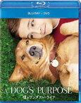 僕のワンダフル・ライフ ブルーレイ+DVDセット(Blu-ray)
