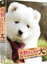 犬飼さんちの犬 DVD-BOX(DVD)