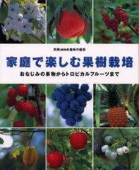 家庭で楽しむ果樹栽培 おなじみの果物から