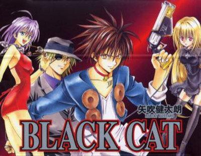 《送料無料》BLACK CAT 全12巻セット