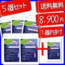 宮崎産ブルーベリー葉使用1個当たり約1484円!!【超得5+1個セット...