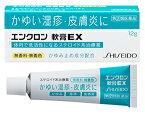 【第(2)類医薬品】資生堂 エンクロン 軟膏EX 12g