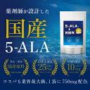 【日本製 / 国産原料使用】『5-ALA & NMN 30粒』【コスパ最大級】5