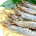 ブラックタイガーエビ有頭(中サイズ)50尾 冷凍便 [ 海老 えび 有頭 ウシエビ ]