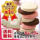 まとめ買いが!断然お得♪楽天ランキング第1位のホワイトデーに最適♪とろける生チョコクッキー