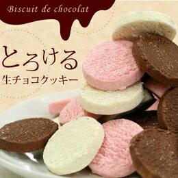 【送料込】生チョコクッキー福袋30個入(北海道・沖縄別途送料500円)【送料込 チョコレート ギフト 贈り物 2015 クッキー スイーツ】
