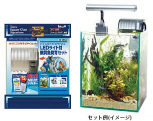 テトラ スクエアグラスアクアリウム LEDライト付き観賞魚飼育セット SG-20HLS