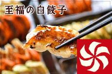 1番人気!!至福の特製餃子