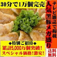 ◆超限定71%OFF◆黒豚&本餃子96個約2kg!【送料無料】