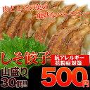 【siso30】餃子 500円 風味豊か!女性に人気!しそ餃子(にんに...