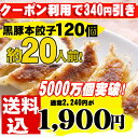 餃子/セット/本餃子と黒豚120個メガ盛り/生餃子【6月10日以降順次発送】
