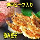 「神戸ビーフ入り!極み餃子」ワンランク上の至高の高級餃子です。味噌だれ付(15個入り)元祖ぎょうざ苑・神戸牛餃子・みそダレ・神戸餃子・サタデープラス・サタプラ