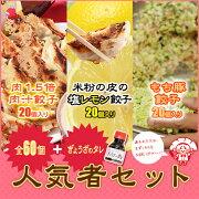 【送料無料】広島好きのお父さんへレモン・もち豚・肉汁餃子が入った人気者セット【ぎょうざ】【ギョーザ】【ギョウザ】【人気】【お取り寄せ】