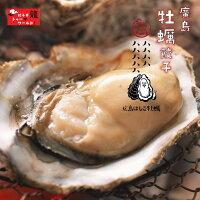 広島好きのお父さんへ!【牡蠣増量】広島県産の牡蠣をたっぷり使用した!ひろしま牡蠣餃子【餃子】【ぎょうざ】【ギョーザ】【ギョウザ】【人気】【お取り寄せ】