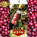 【超希少ワイン】山形県産 希少さくらんぼ 紅さやか100%のフルーツワイン 500ml 限定50本【...