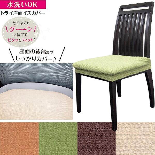 椅子カバー座面カバー 12%OFF  Colorsトライ座面イスカバー(ダイニング椅子座面オフィスフィットチェアカバー伸縮布座面