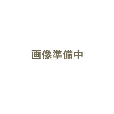 【クーポン対象6日23:59迄】ハッコー デジタルパーミングアイロン 25mm コテ型|カールヘアアイロン カールヘアーアイロン カールアイロン カール ヘアアイロン ヘアーアイロン アイロン デジタルパーミング パーミングアイロン パーミング