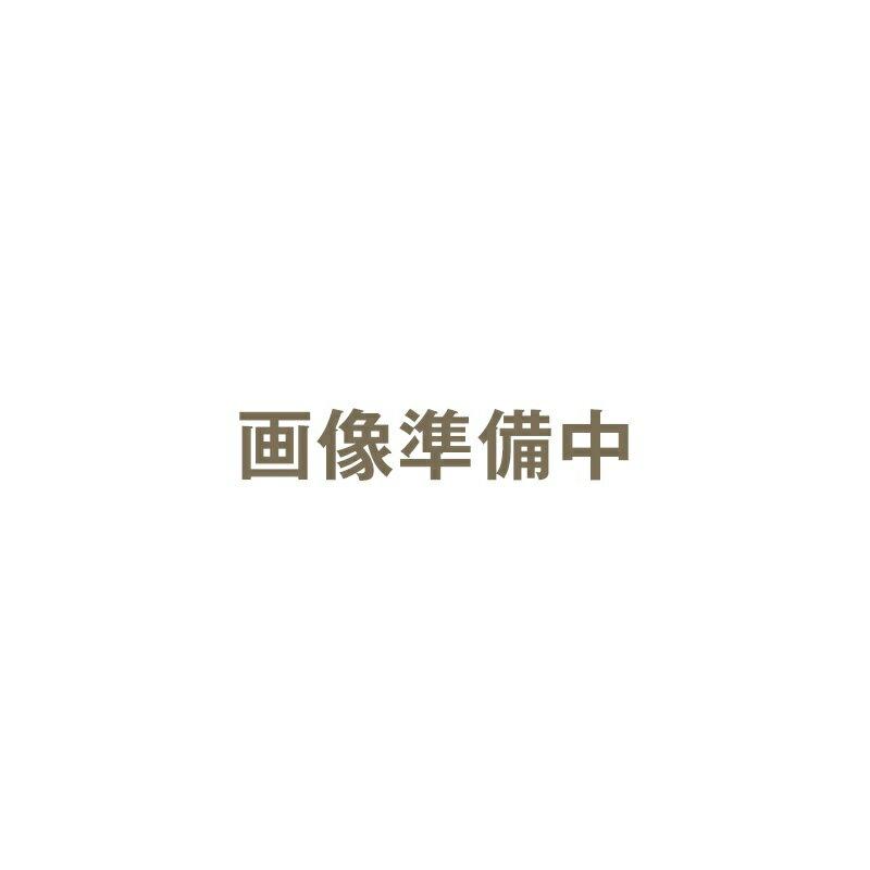 マイクロトリム グルーマー RF-2500 替刃|大阪ブラシ マイクロトリムグルーマー マイクログルーマー 替刃 純正替刃 純正 RF-2500 メンズグルーミング グルーミング レディースシェーバー フェイスシェーバー シェーバー