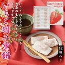 塩もち (おかき 塩味 和菓子 日本橋錦豊琳 おつまみ お茶請け)