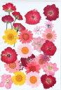 DIY用 押し花 ドライフラワー ブリザードフラワー 春色ミックス ハンドメイド ワックスバー ピンク 赤