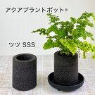 https://image.rakuten.co.jp/hachi0203/cabinet/mem_banner/imgrc0083458369.jpg