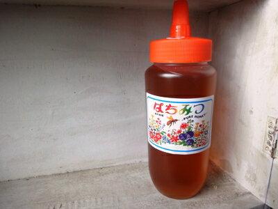 (29年度)今年の新蜜 国産りんごはちみつです^^ 蜂蜜 内容量500g送料無料!!