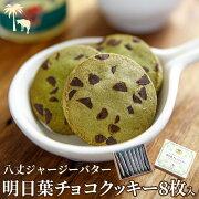 八丈島ジャージーバター明日葉チョコクッキー