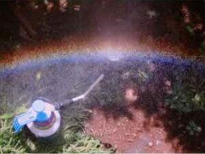 水遊び水鉄砲虹の鳥太陽光と水でホンモノの虹を作ります。「テレビ東京WBSトレンドたまご」「東海テレビくりびつ」紹介品